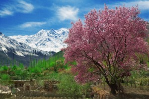 Hunza at Autumn